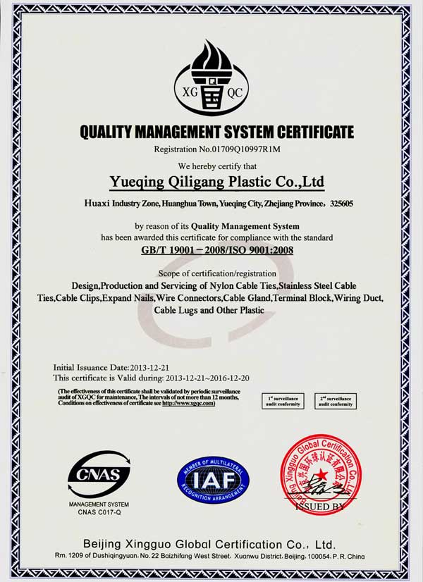 ISO9001 Certificate Qiligang